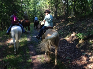 There is lots to talk about while riding.