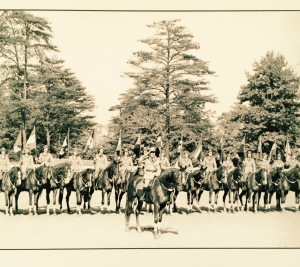 This photo captures only part of the 24-horse Drill Team.